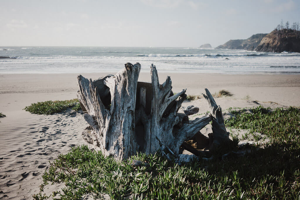 Trinidad state beach is one of the most beautiful Humboldt county beaches