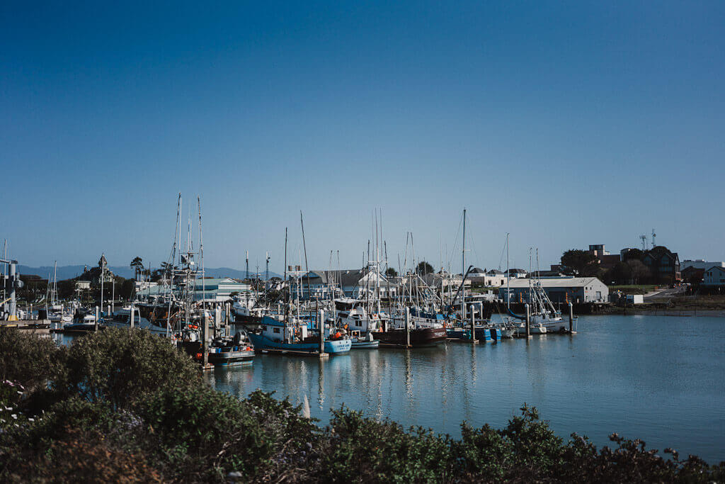 Woodley Island, Eureka, California