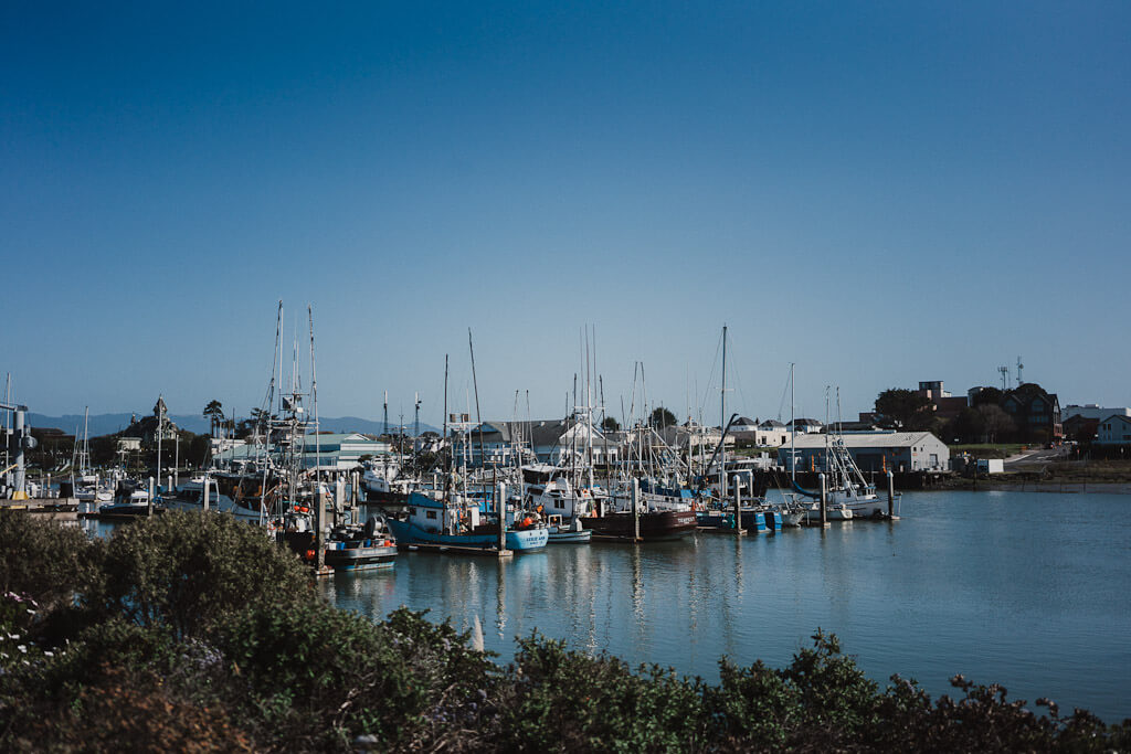 Woodley Island, Eureka, California