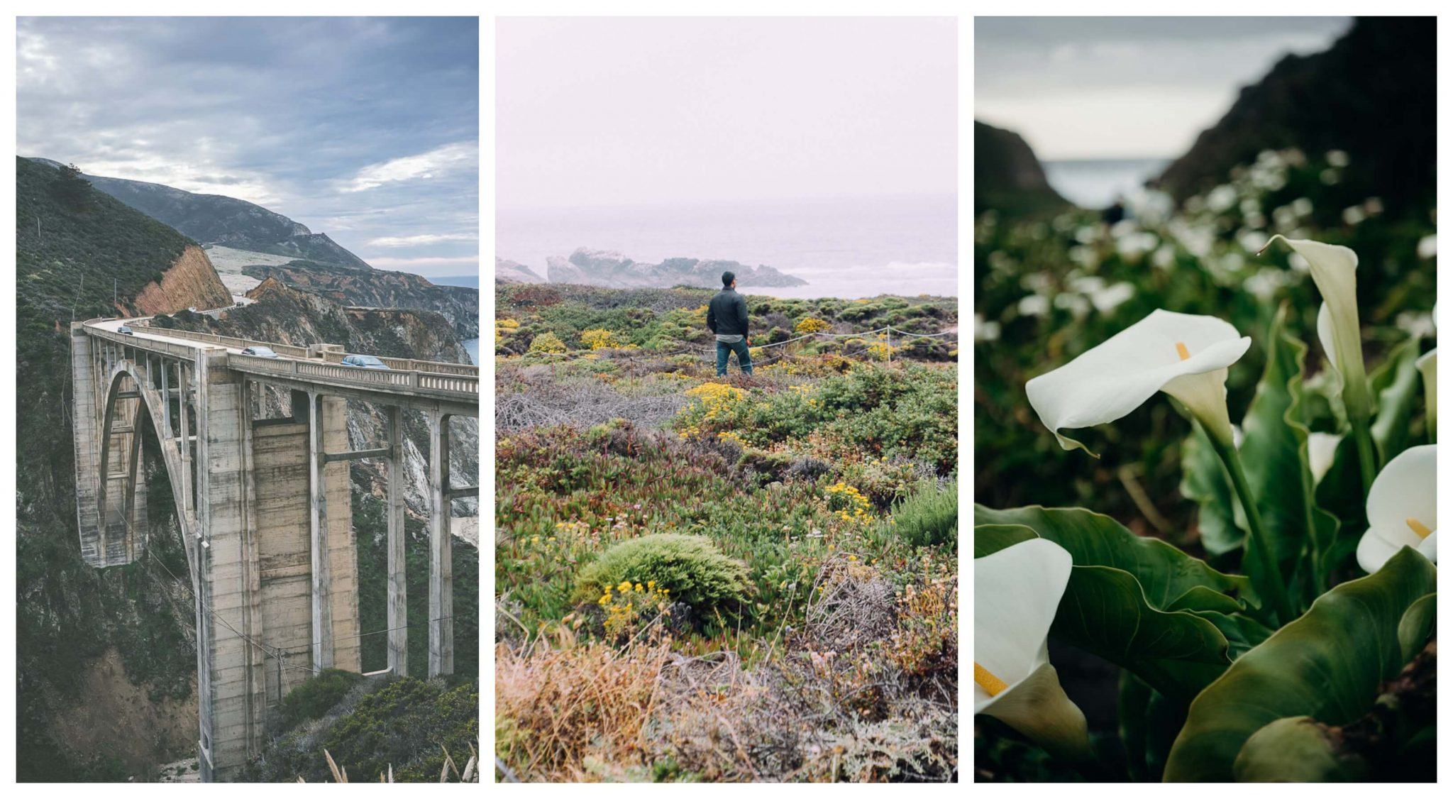 Things to do on weekend getaway to Central coast: drive down Big Sur