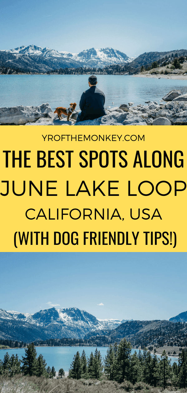 Looking to drive the June Lake Loop in California's Eastern Sierras? This post has all the tips and info on the best spots along the scenic route for the perfect California adventure! Dog friendly tips and handy map included! Pin this to your California or USA board now! #junelakeloop #california #USA #roadtrip #EasternSierras #monocounty #Californiaroadtrip #alpine