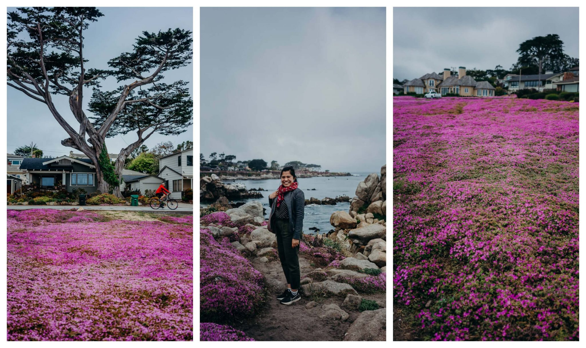 Ocean View Drive in Pacific Grove