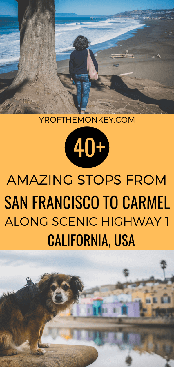 Looking for the best stops along Highway 1 for your San Francisco to Carmel road trip in California, USA? Then read this post aka my tried and tested guide on the best things to do and see on a San Francisco to Carmel drive along PCH. Pin this to your California or USA board now! #USA #California #PCH #Highway1 #Californiaroadtrip #Sanfranciscotocarmel #Centralcoast #Californiacoast