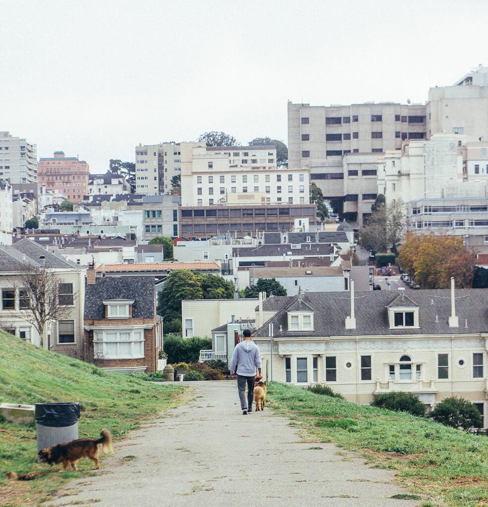 Alta Plaza dog park in San Francisco