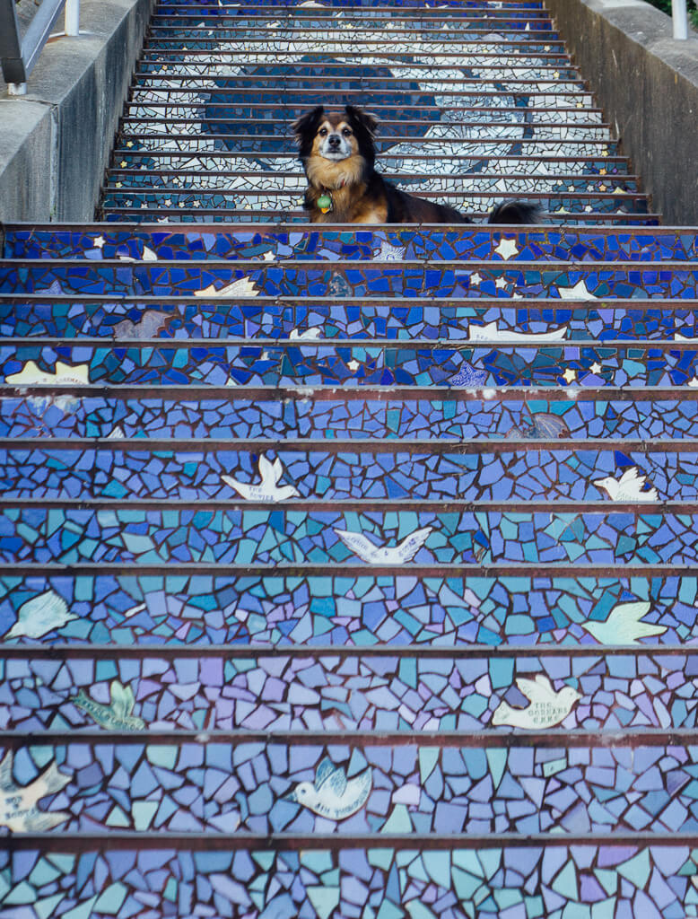 16th Avenue Mosaic Steps and Grand View Park