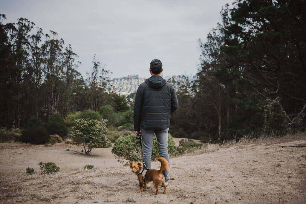 John McLaren park is one of the best dog parks in San Francisco
