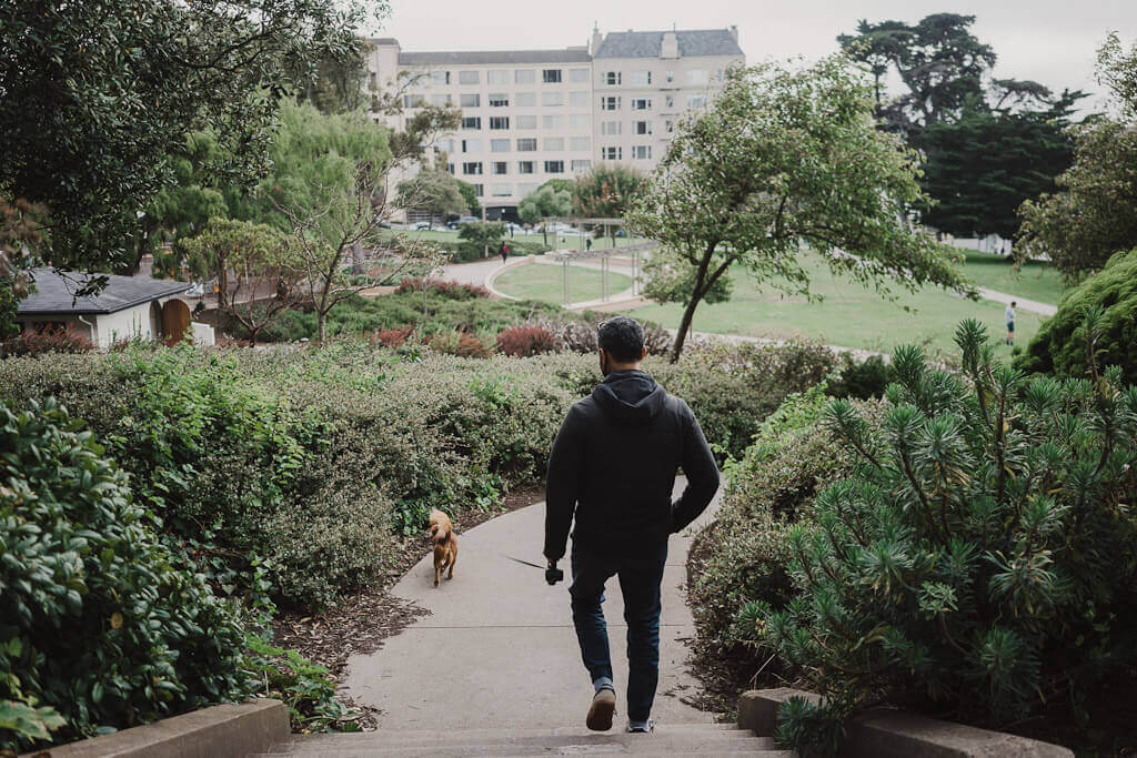 Dog parks in San Francisco that you must visit