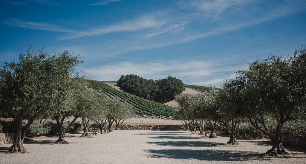 Wineries allowing dogs in Paso Robles, dog friendly wine tasting in Paso Robles