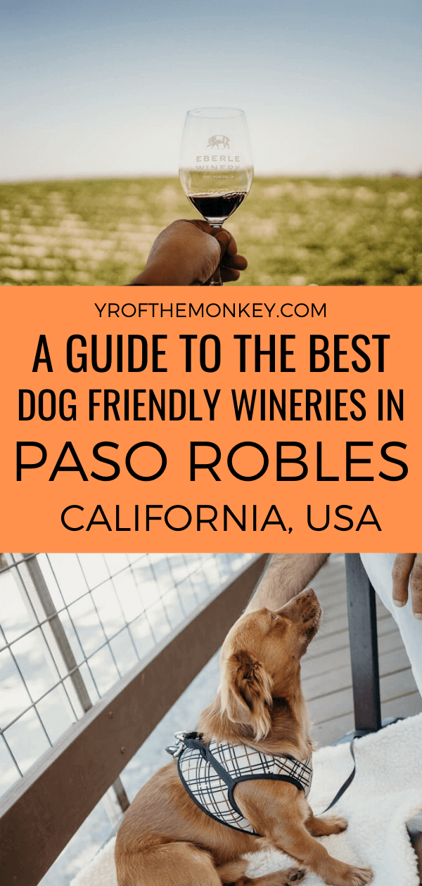 Looking for the best dog friendly wineries in Paso Robles, California? I have the perfect post for you with some of the best wineries in Paso welcoming dogs. Plus, lots of details on dog friendly hotels and restaurants included for an epic dog friendly vacation in Paso #Pasorobles #California #USA #America #dogfriendlytravel #dogfriendlywinery #petfriendly #travelwithdogs