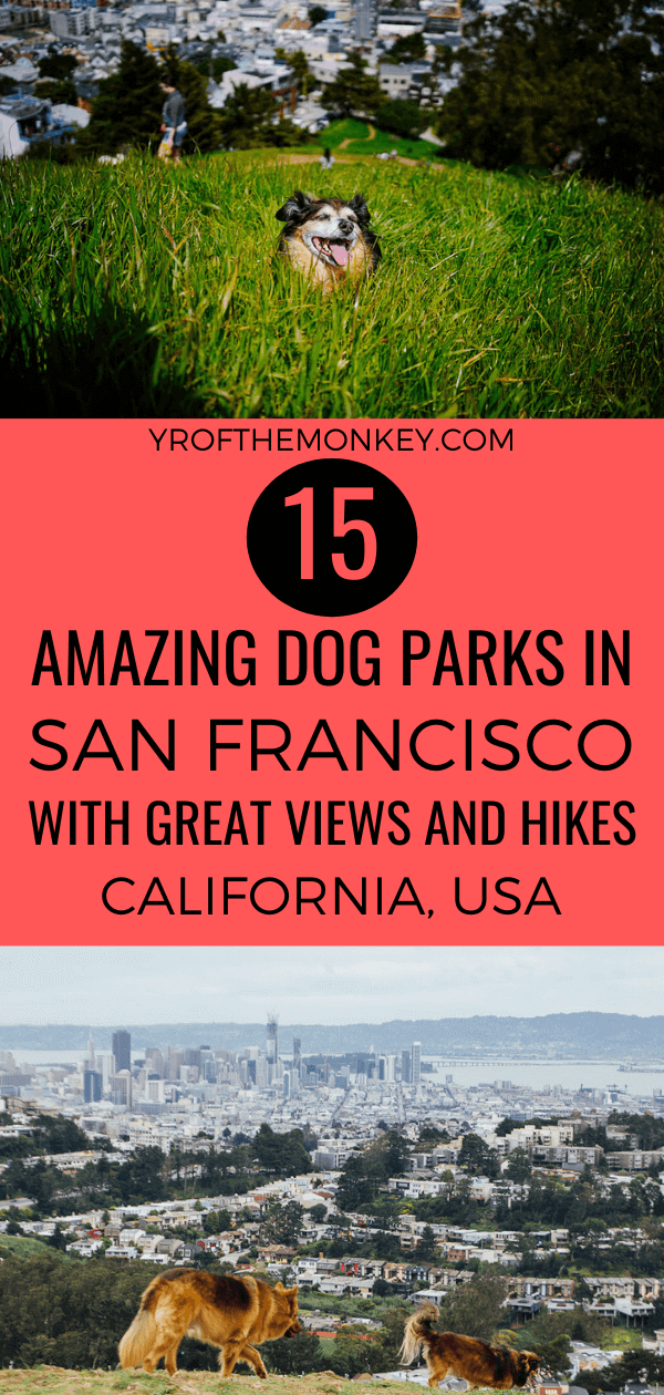 Looking for the best dog parks in San Francisco for leash free dog play areas, panoramic views and dog friendly hiking trails? Then this post by a resident dog mom is perfect for you! Includes 15 of the best San Francisco dog parks and all the details you need to have fun day out with your dog in the park. Pin this to your dog friendly travel board now! #SanFrancisco #California #USA #America #dogparks #dogfriendlytravel #travelwithdogs #petfriendly #dogfriendly