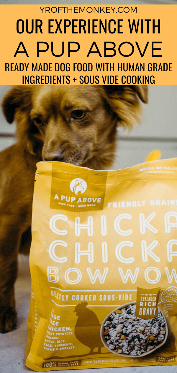Reviewing A Pup Above: A premade wet dog food with human grade ingredients and sous vide cooking. #Apupabove #sousvide #humangradeingredients #dogfood #premadedogfood #wetdogfood